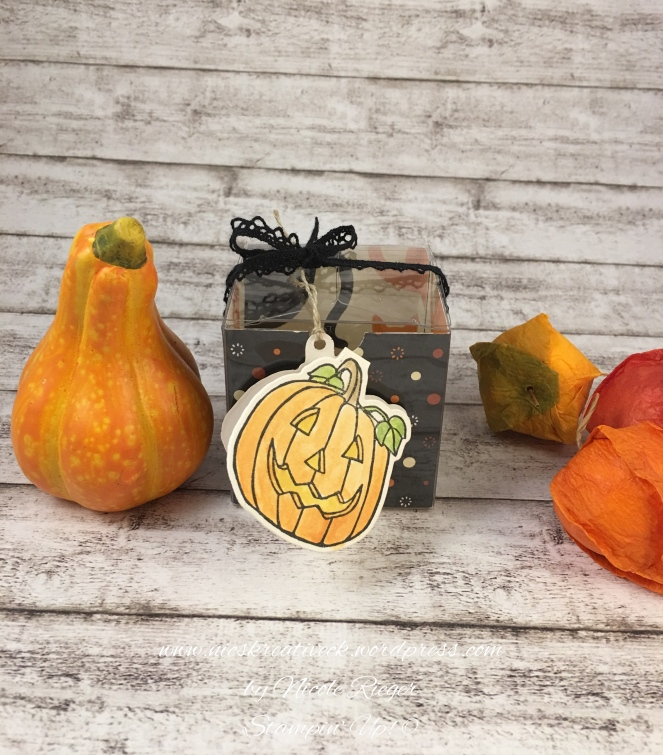 Halloween_Box_Seasonal Chums_Stampin_Up_1_Fotor
