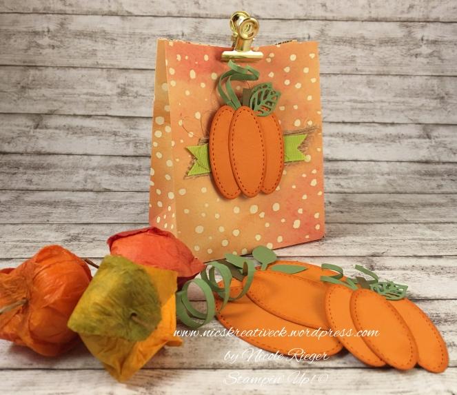 Herbstliche Tüte_Stampin_Up_4_Fotor