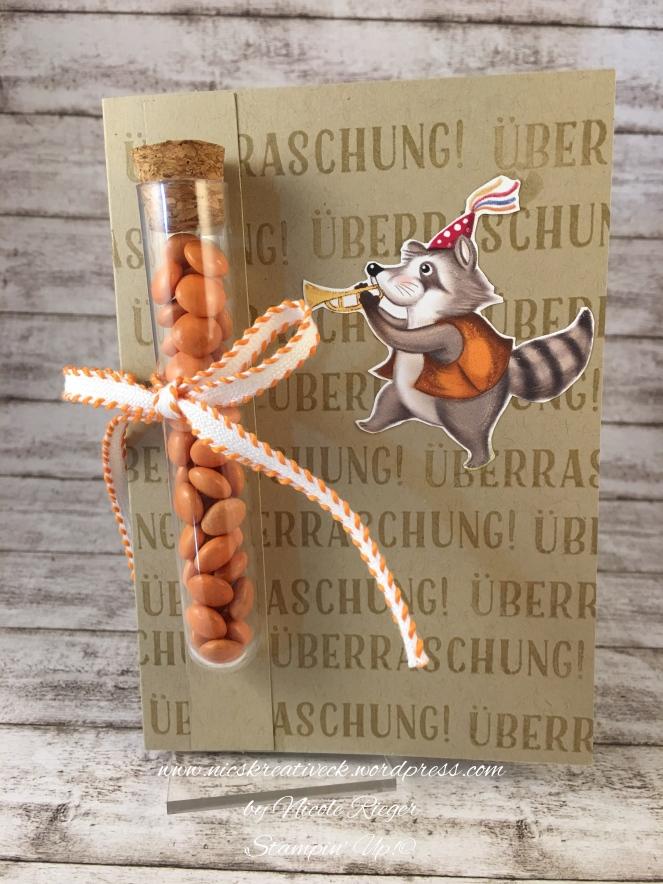 Stampin_Up_Geburtstagskreation_Waschbaer