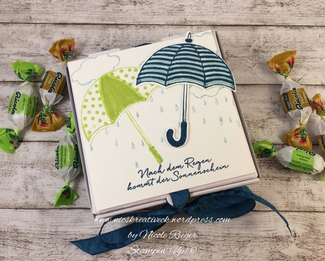 Stampin Up_Donnerwetter_Box_oben