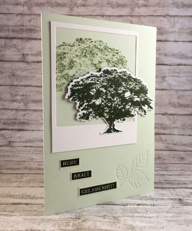 Stampin_Up_KraftderNatur_side
